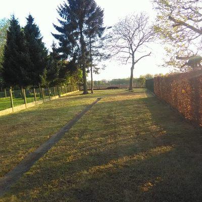 Tuinen Yordi - Zwalm - Tuinonderhoud